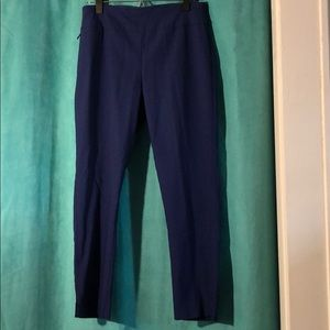 Van Heusen Royal Blue Pant
